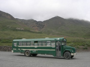 A unique mode of transportation... the Denali shuttle bus