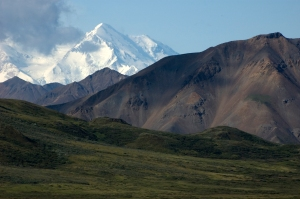 My first glimpse of Denali! I was so lucky to see this mountain usually obscured by clouds.